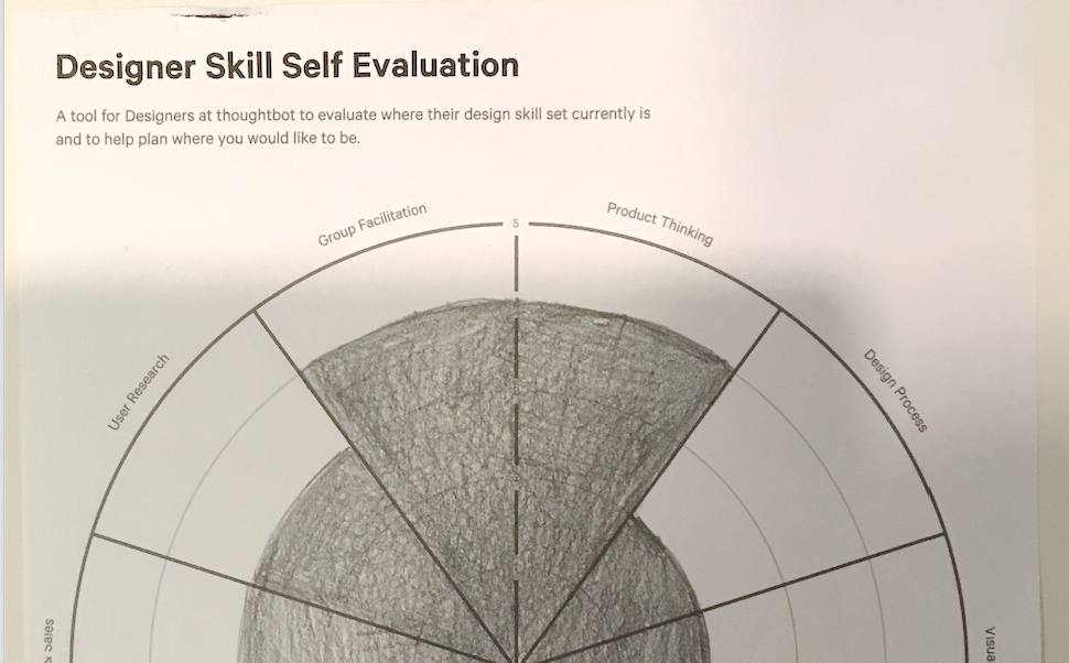 Filled out sample of the Skill Self-evaluation